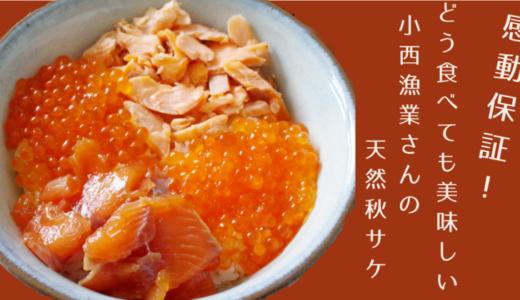 【船上活〆で抜群の美味しさ!】北海道マルホン小西漁業さんの【天然秋サケ】