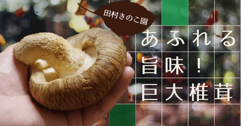 f:id:edomae-sushi:20201009145124p:plain