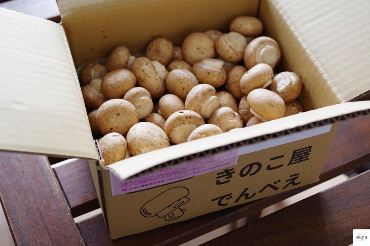 食べチョクマッシュルーム箱