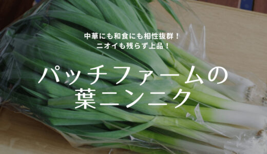 葉ニンニクを買える貴重な生産者さん!野菜ソムリエサミット金賞のパッチファームさん