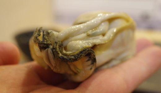 鮨が10倍楽しくなる旬魚の世界 No. 21~冬~マガキ(真牡蠣)