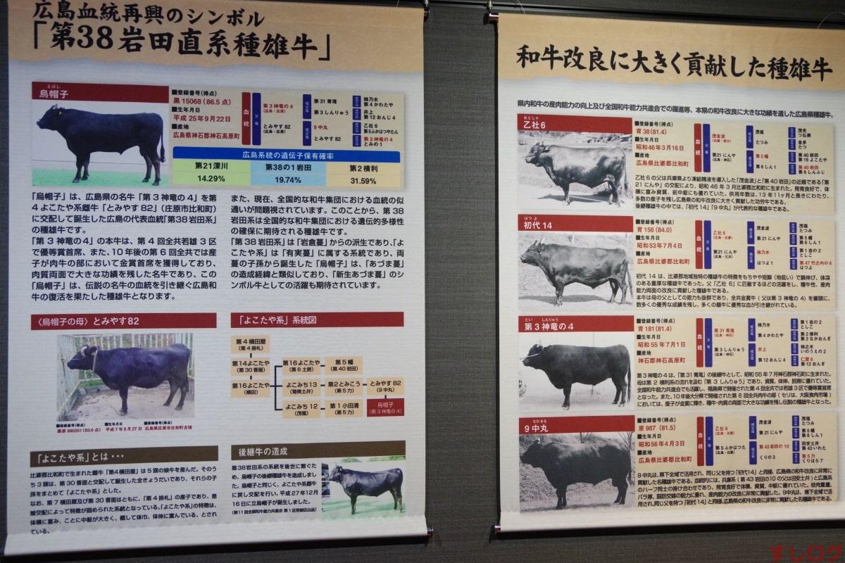 広島和牛第3神竜の4号ほか