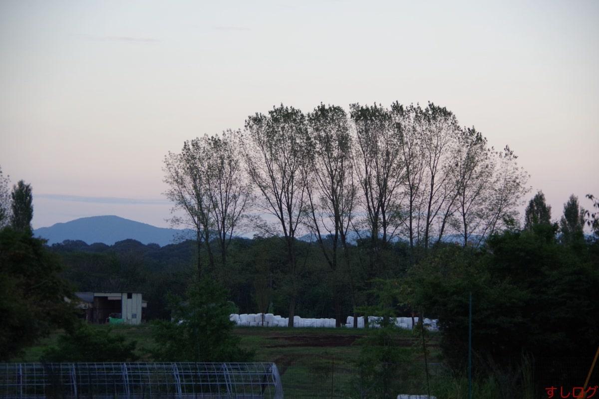 広島和牛七塚原02